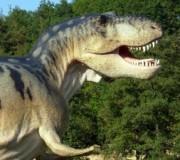 Dinosaurio. Puntos Función en extinción?