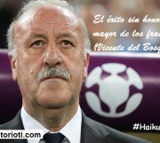 haiku: éxito sin honor, Vicente del Bosque