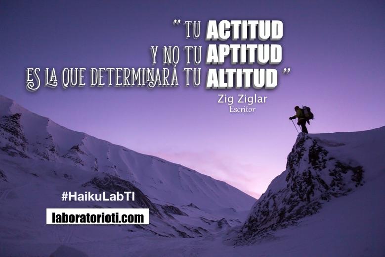 haiku actitud