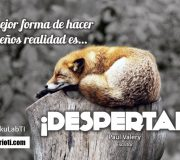 haiku despertar