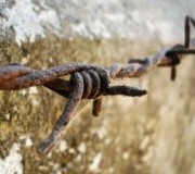 Imagen de un alambre de espino
