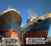 Puntos Función IFPUG NESMA