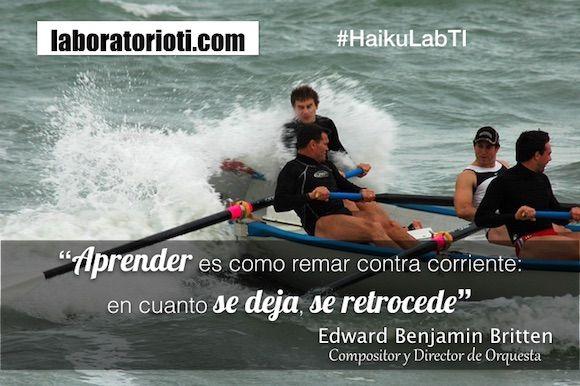 haiku aprender