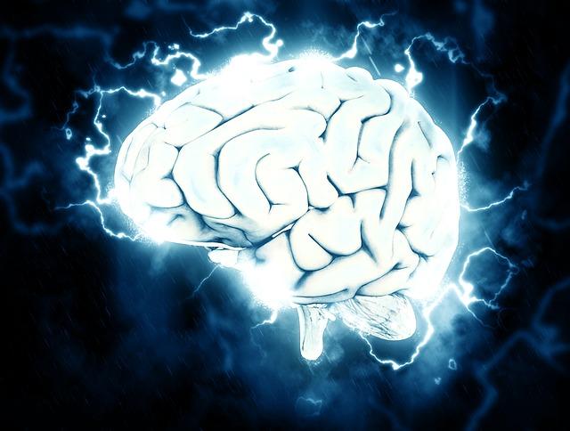 el-cerebro
