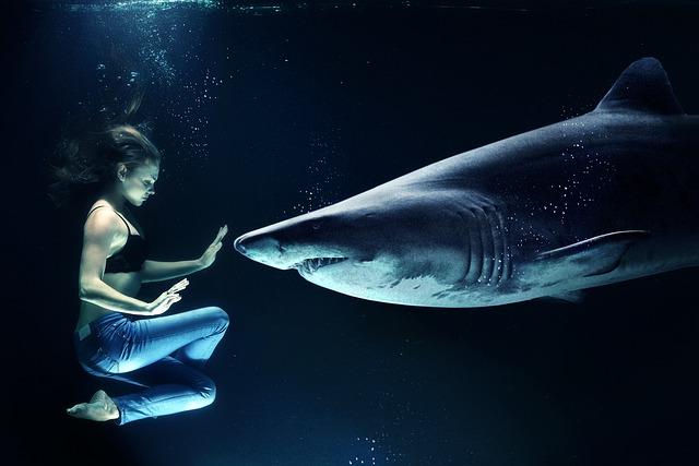 chica tiburon
