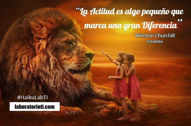 haiku_churchill_Actitud