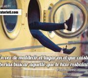 haiku Coelho