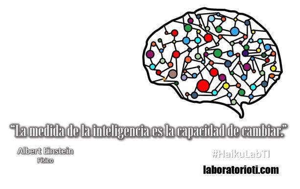 haiku inteligencia