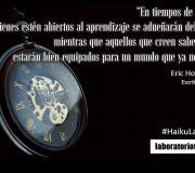haiku tiempo de cambio