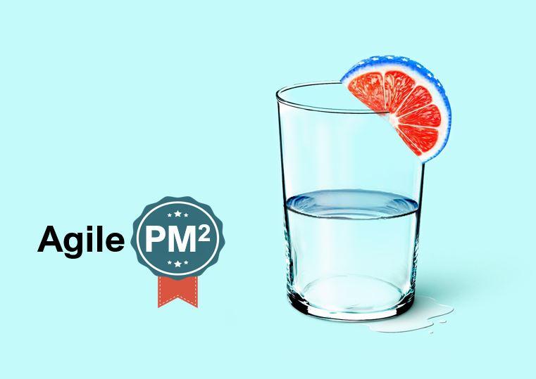 agile pm2
